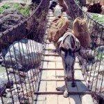 himalajskie mosty wiszące
