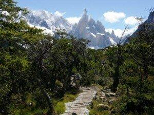 parnorma Cerro Tore