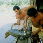 upolowany krokodyl trafił na naszą barkę