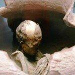 mumie w muzeum w San Pedro de Atacama